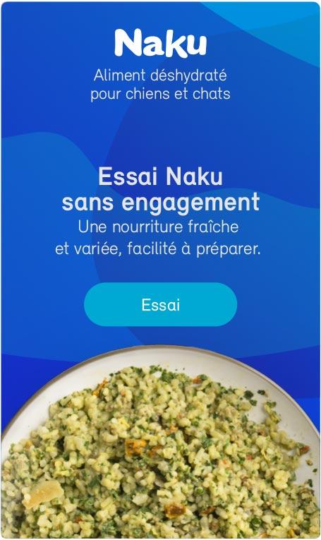 Essai Naku